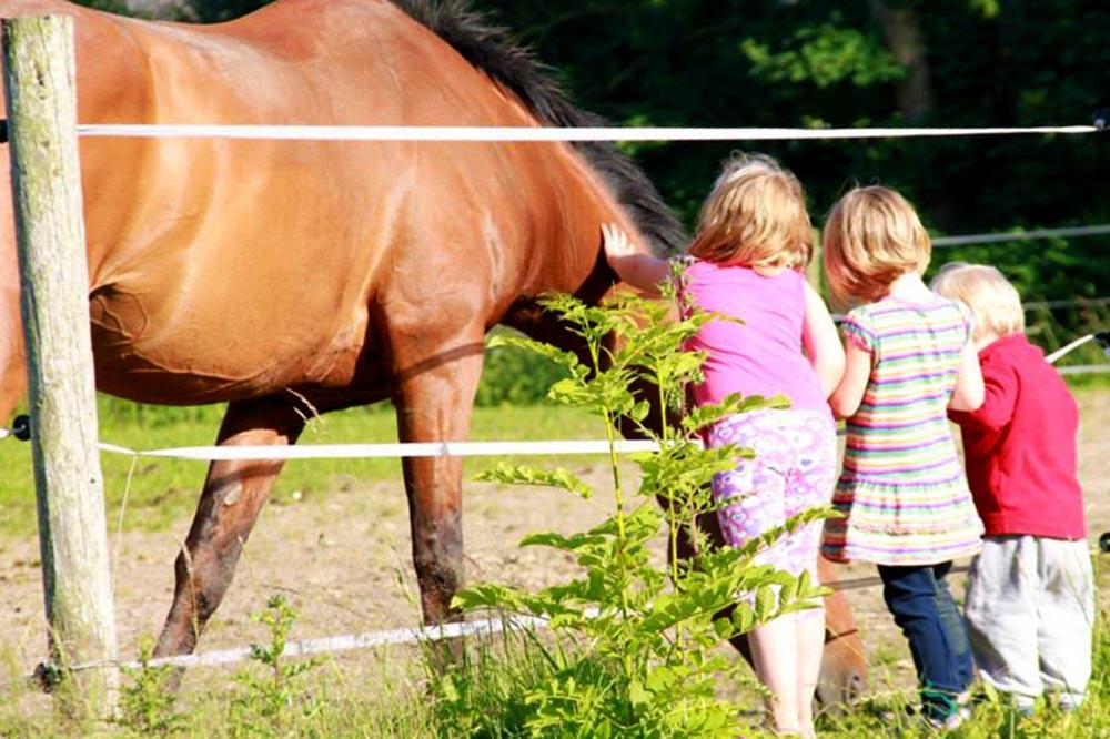 Unsere Gäste mit unseren Pferden