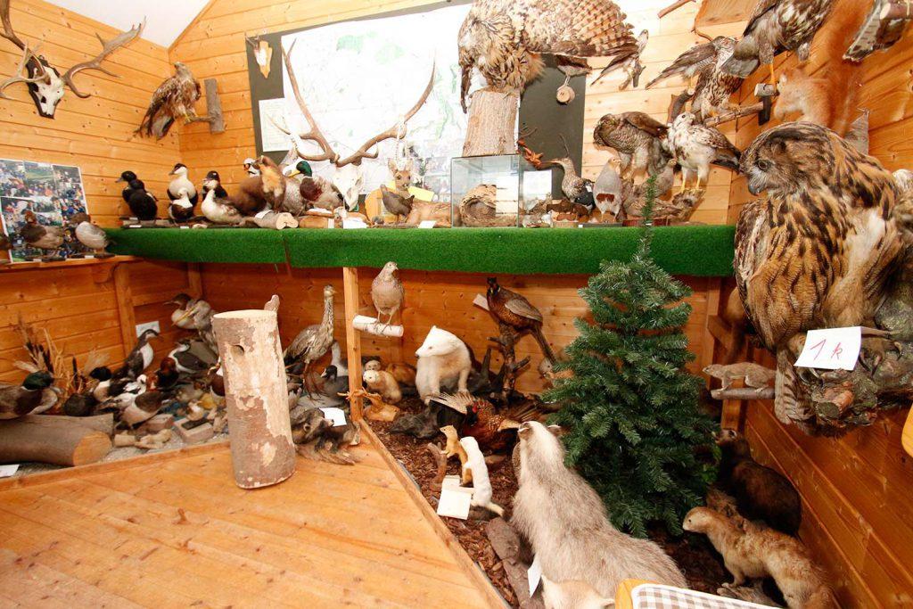 Die Jagdhütte auf dem Ferienhof Langballig